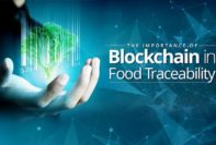 Blockchain Technology in Food Traceability