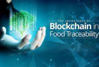 Blockchain Technology in Food Traceability